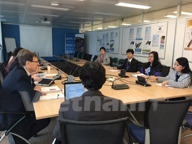 OMS reconoce avance vietnamita en lucha contra tuberculosis hinh anh 1