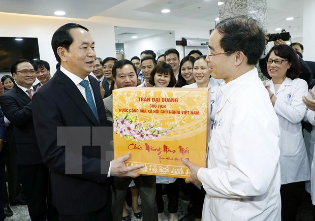 Presidente realiza visitas en momentos de transicion a Nuevo Ano Lunar hinh anh 1