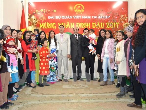 Vietnamitas en Egipto y Camboya celebran el Tet hinh anh 1