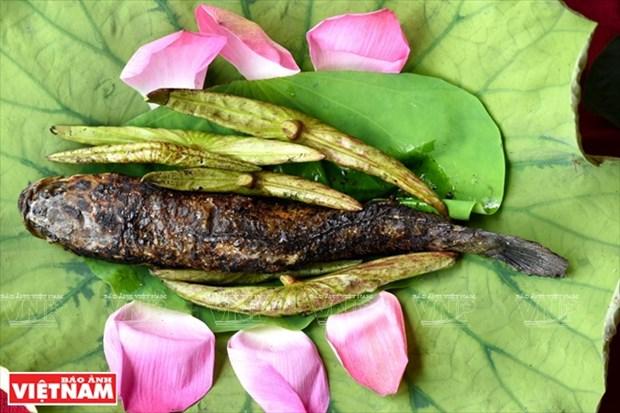 Flor de loto en el campo gastronomico hinh anh 2