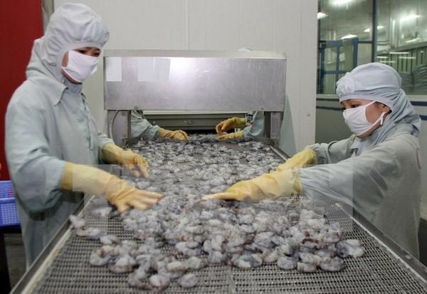 Pronostican continuo crecimiento de exportaciones acuicolas de Vietnam en 2017 hinh anh 1