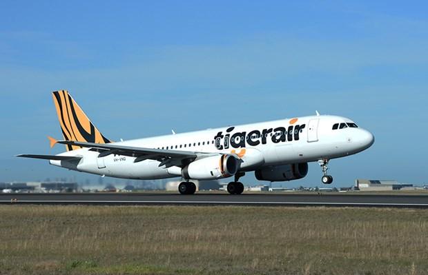 Tigerair suspende vuelos entre Australia y Bali hinh anh 1