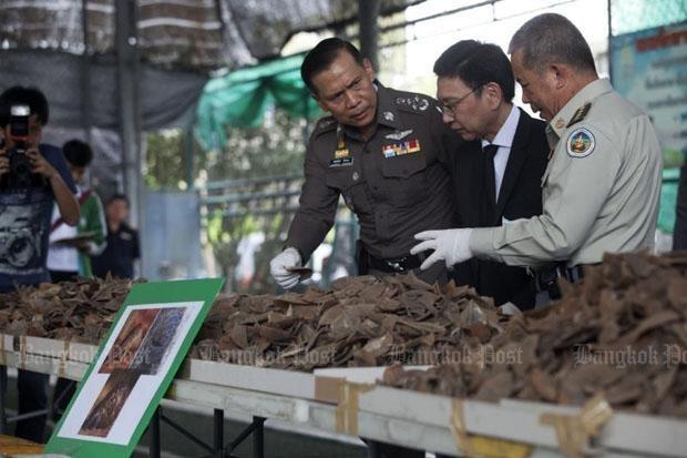 Policia tailandesa incauta cantidad record de escamas de pangolin hinh anh 1