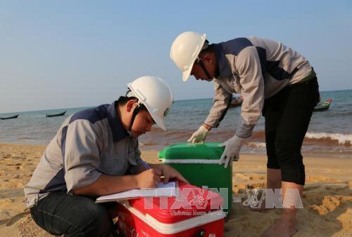 Urgen a control del ambiente marino en provincias centrovietnamitas hinh anh 1