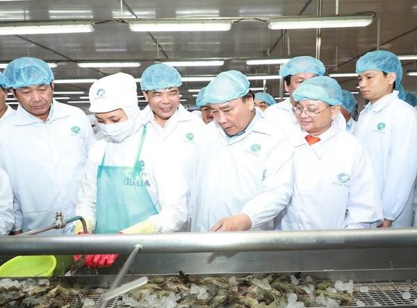 Premier vietnamita visita empresa lider de exportacion de camarones en mundo hinh anh 1