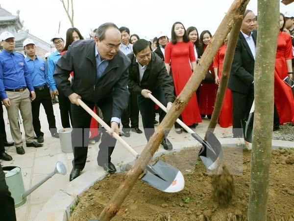 Promueven en Vietnam el movimiento de proteccion forestal hinh anh 1