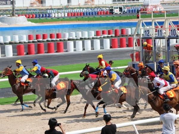 Gobierno vietnamita avala apuestas en carreras de perros y caballos hinh anh 1