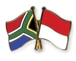 Indonesia y Sudafrica impulsan cooperacion economica hinh anh 1