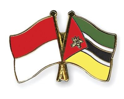 Indonesia y Mozambique fomentan cooperacion economica hinh anh 1