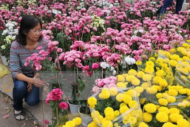 Se aproxima mayor festival de rosas en Vietnam hinh anh 1