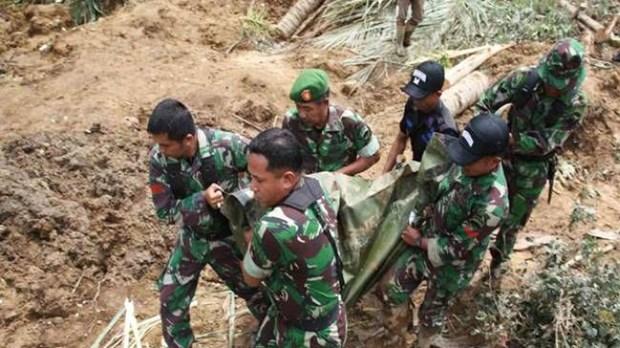 Indonesia: Al menos 12 muertos por deslizamientos de tierra hinh anh 1