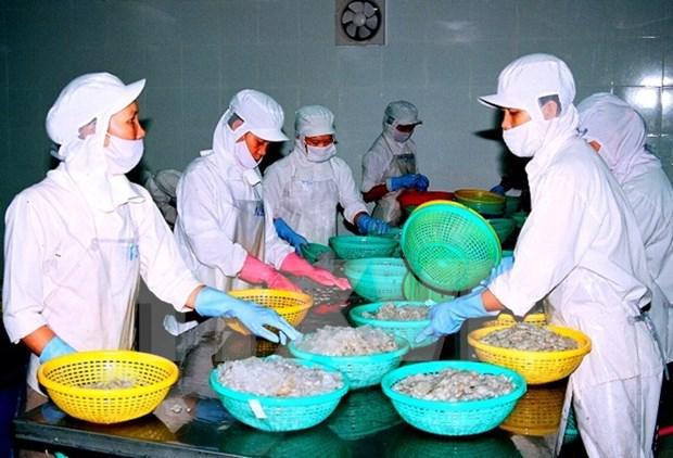 Vietnam pide a Australia eliminar pronto suspension a importacion de camarones hinh anh 1