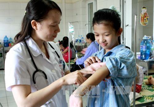 Ministerio de Salud de Vietnam alerta sobre fiebre amarilla hinh anh 1