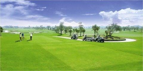 Provincia vietnamita construira campo de golf de 27 hoyos hinh anh 1