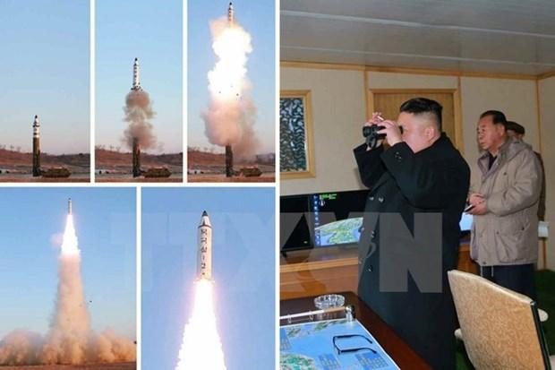 Vietnam preocupado por prueba de misil balistico de RPDC hinh anh 1