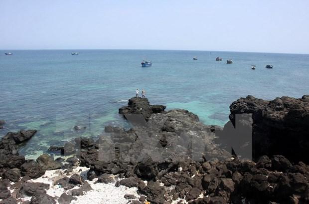 Forman zona de reserva marina en provincia central de Vietnam hinh anh 1