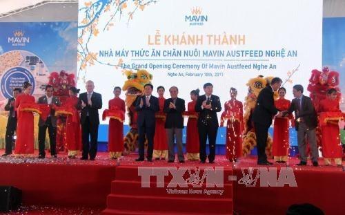 Inauguran fabrica de piensos de 14,3 millones de dolares en Nghe An hinh anh 1