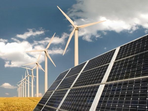 Indonesia y Suecia impulsan cooperacion en energia renovable hinh anh 1