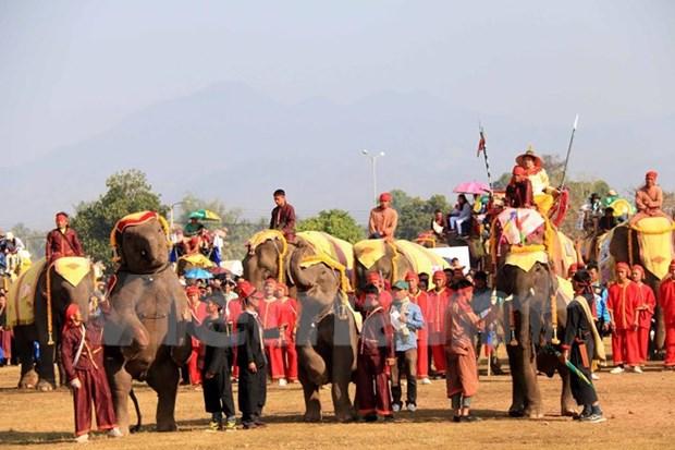 Festival en provincia laosiana promueve la proteccion de elefantes hinh anh 1