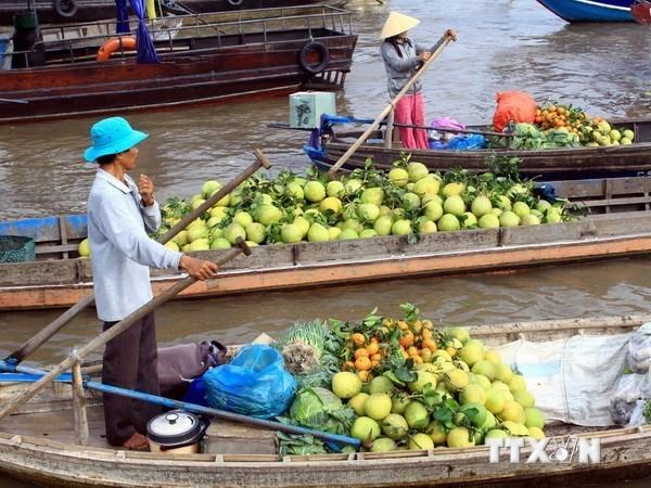 Provincia vietnamita invierte 30 millones de dolares en desarrollo turistico hinh anh 1