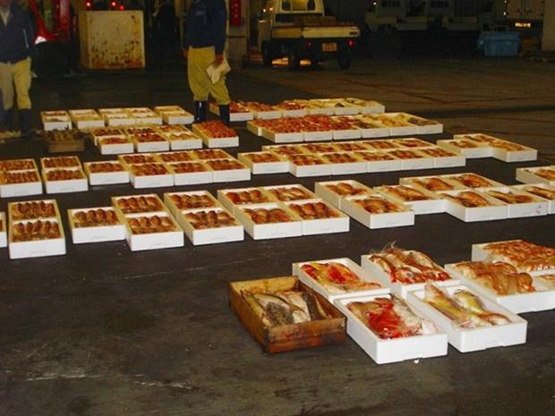 Exportadores japoneses de productos acuicolas muestran interes en Vietnam hinh anh 1