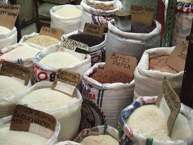 Indonesia mantiene vision positiva sobre satisfacer demanda nacional de arroz hinh anh 1