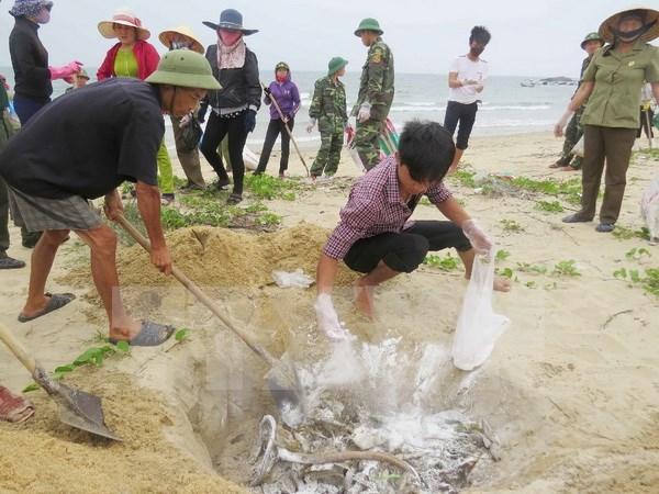 Revisan prestamos por impacto de incidente ambiental en provincias costeras de Vietnam hinh anh 1