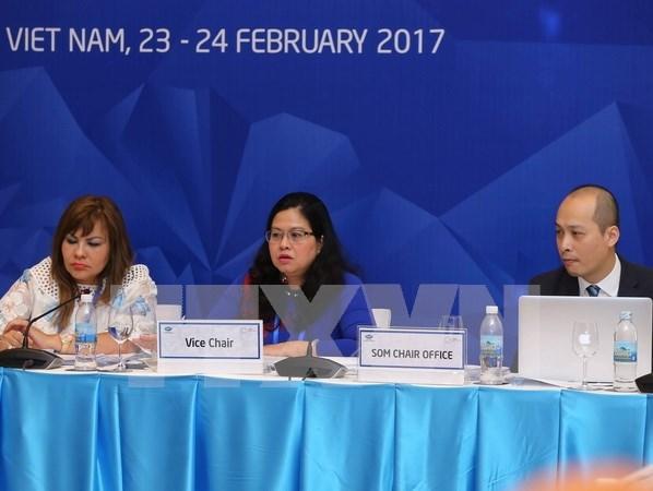 Grupo de salud de APEC aprecia tema y prioridades planteadas por Vietnam hinh anh 1