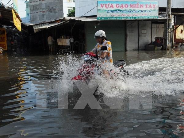 Impulsara Ciudad Ho Chi Minh proyectos contra erosion fluvial hinh anh 1