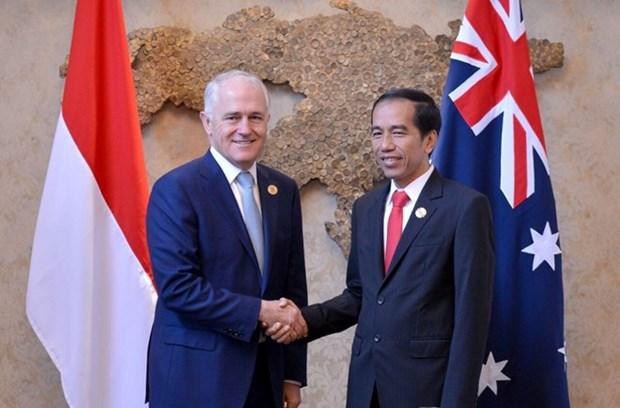 Australia e Indonesia acuerdan reanudar cooperacion militar hinh anh 1