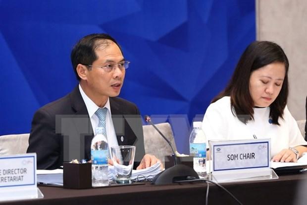 Comites de APEC impulsan realizacion de Objetivos de Bogor hinh anh 1