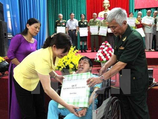 Lanzan en Vietnam campana de solidaridad con victimas del agente/dioxina hinh anh 1