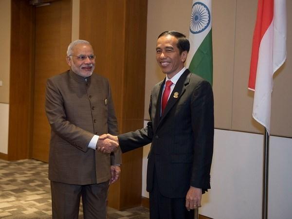 Indonesia e Iran impulsan cooperacion economica hinh anh 1