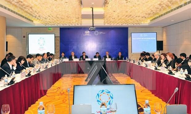 Prioridades de APEC concretadas en contenidos de cooperacion de grupos de trabajo hinh anh 1