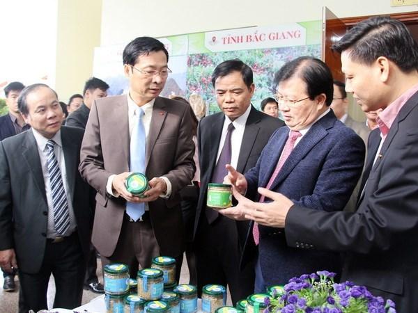 Vicepremier urge a desarrollar productos ventajosos de Quang Ninh hinh anh 1