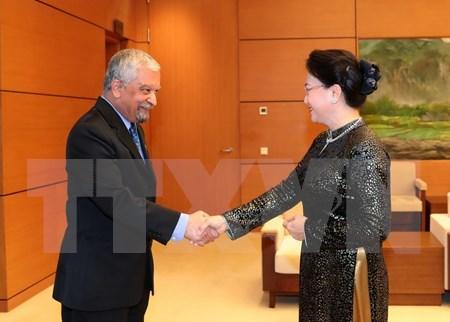 Presidenta legislativa resalta labor de ONU en Vietnam hinh anh 1
