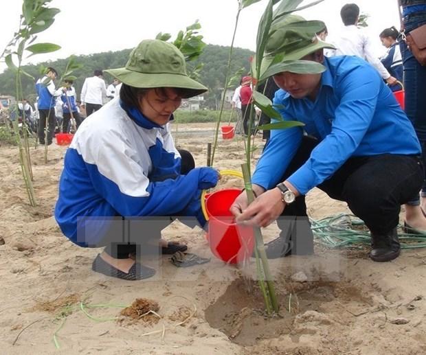 Proyecto estadounidense ayuda a proteger medioambiente en Vietnam hinh anh 1