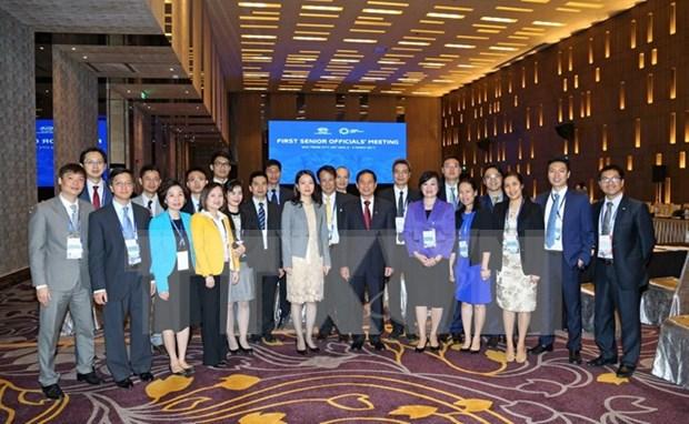 SOM1, buen inicio del Ano del APEC 2017 hinh anh 1