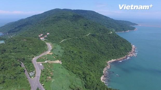 Montana Son Tra declarada sitio turistico nacional de Vietnam hinh anh 1