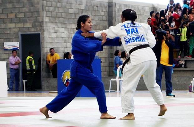 Judocas vietnamitas ganan tres oros en torneo en Hong Kong hinh anh 1