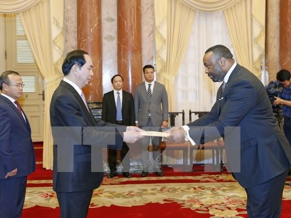 Presidente de Vietnam recibe a nuevos embajadores hinh anh 5
