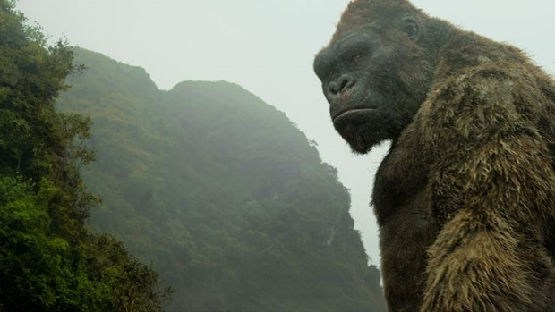 ¿Por que Vietnam es el lugar perfecto para Kong: la Isla Calavera? hinh anh 1