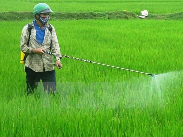 Aclaran nuevas regulaciones en sector agricola vietnamita para empresas estadounidenses hinh anh 1