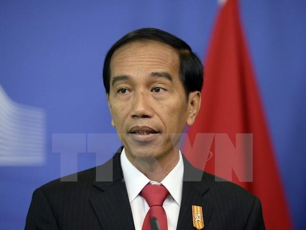 Politicos indonesios procesados por corrupcion hinh anh 1