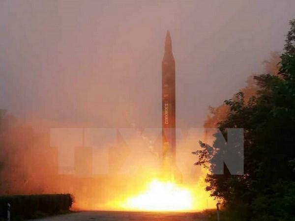 Vietnam preocupado por lanzamiento de misiles efectuado por Corea del Norte hinh anh 1