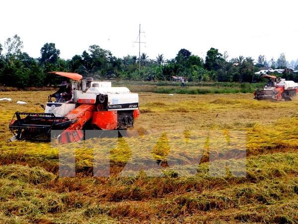 Inauguran Exposicion internacional de agricultura en Vietnam hinh anh 1