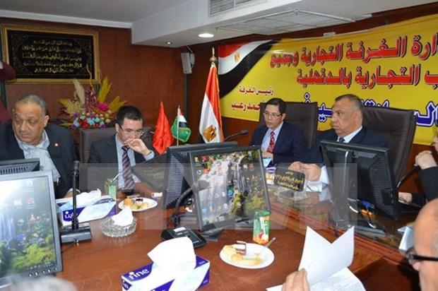 Empresas egipcias buscan oportunidades de cooperacion con Vietnam hinh anh 1