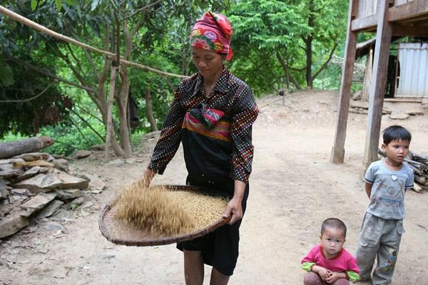 Thanh Hoa avanza en reduccion sostenible de la pobreza hinh anh 1