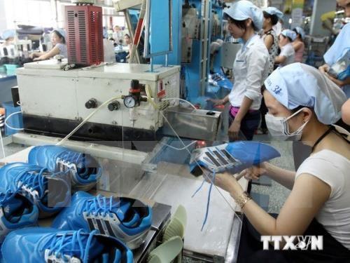 Sector de cuero y calzado de Vietnam en busca de impulsar su desarrollo hinh anh 1