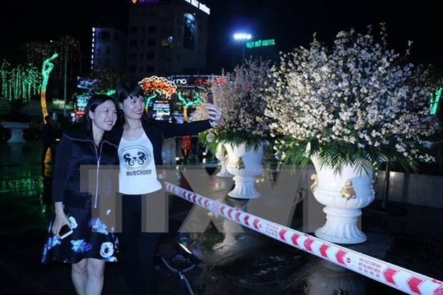 Celebran programa de intercambio cultural Vietnam-Japon hinh anh 1